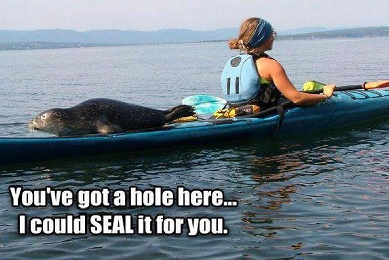 Kayaking puns